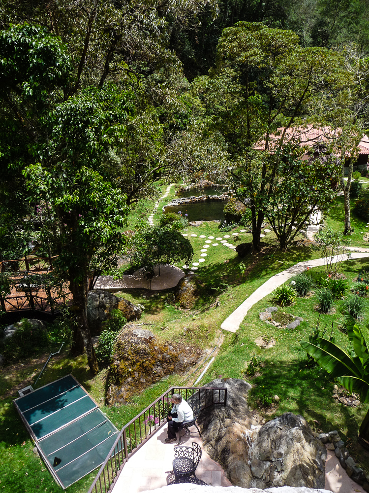 View point at Trogon lodge